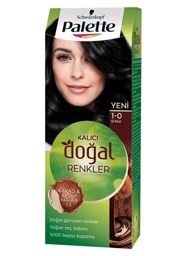 Palette Doğal Renkler 1-0 Siyah Saç Boyası Siyah